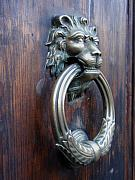 Door Knockers And Handles - Grimacing Lion side by Edan Chapman