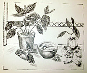Rack Drawings Prints - Grinding Herbs Print by Shelley Bain