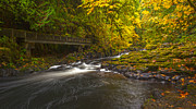 Creek Prints - Grist Mill Creek Print by Mike Reid