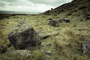 Martyn Williams - Gritstone Rocks And...