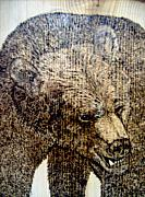 Bear Pyrography Originals - Grizzly Bear by Doug Crete