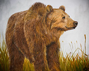 Kodiak Originals - Grizzly Bear by Mindee Green