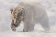 Lumbering Art - Grizzly in the Mist by Anita Erdmann