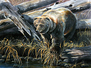 Kodiak Painting Posters - Grizzly Pond Poster by Scott Thompson