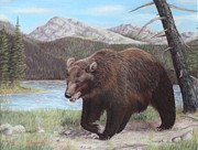 Grizzly Pastels Prints - Grizzly Print by Sabina Bonifazi