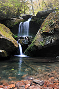North Fork Prints - Grotto Falls-The Lower Cascades Print by Thomas Schoeller