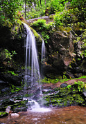 North Fork Prints - Grotto Falls Print by Thomas Schoeller