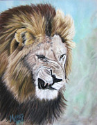 Lion Pastels - Grouchy by Maris Sherwood