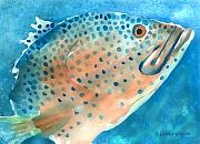 Marine Fish Digital Art - Grouper by Arline Wagner