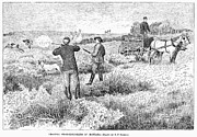 Prairie Chicken Prints - Grouse Hunting, 1885 Print by Granger