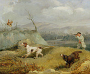Fowl Paintings - Grouse Shooting  by Henry Thomas Alken
