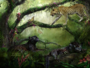 Jaguar Art Posters - Growing Wild Poster by Carol Cavalaris