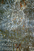 Writing Posters - Grunge Background III Poster by Carlos Caetano