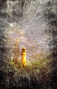 Lighthouse Digital Art - Grunge Light House by Svetlana Sewell