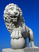 Florida Bridge Photos - Guardian Lion by Elizabeth Hoskinson
