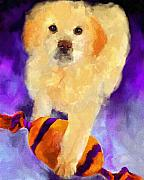 Toy Dog Paintings - Guarding the Ball by Jai Johnson