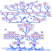 Genealogy Prints - Guggenheim Family Tree Print by Science Source