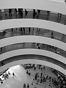 Interiors Framed Prints - Guggenheim Interior Framed Print by Vijay Sharon Govender