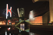 Pais Vasco Art - Guggenheim museum at night by Fernando Alvarez