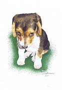 Puppy Drawings - Guilty puppy by Judy Skaltsounis