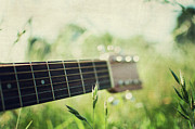 Acoustic Posters - Guitar In Country Meadow Poster by Images by Victoria J Baxter