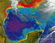 From Above Photos - Gulf Of Mexico Dead Zone by Science Source