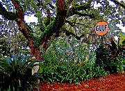 Michael Thomas Prints - Gulf Sign in a Sea of Vegetation Print by Michael Thomas