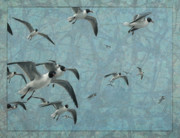 Beaches Drawings Prints - Gulls Print by James W Johnson
