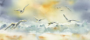 Kay Johnson - Gulls