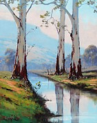 Eucalyptus Paintings - Gum Reflections by Graham Gercken