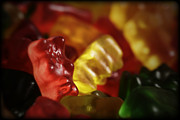 Sized Metal Prints - Gummi Bears Metal Print by Rick Berk