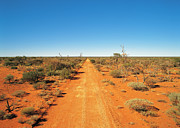 Gravel Road Prints - Gunbarrel Highway In Outback Western Australia Print by Peter Walton Photography