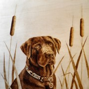 Labrador Retriever Pyrography Acrylic Prints - Gunner Acrylic Print by Adam Owen