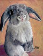Bunny Drawings Prints - Gus Print by Laura Bell