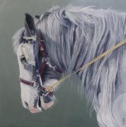 Blinkers Paintings - Gypsy cob mare-Milltown fair by Pauline Sharp