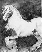 Signed Mixed Media Originals - Gypsy Cob Pony by Jodi Bauter