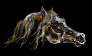 Horse Drawing Digital Art Posters - Gypsy Horse Stallion Poster by Stacey Mayer