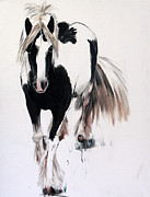 Shores Painting Prints - Gypsy Vanner Print by Abbie Shores