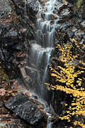 Autumn Photos Prints - Hadlock Brook Falls Print by Juergen Roth