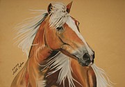 Unique Art Pastels Prints - Haflinger  Print by Melita Safran