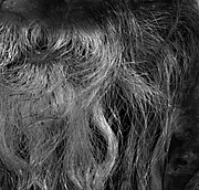 Homeless Man Prints - Hairlip Print by Jerry Cordeiro