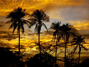 Haiti Metal Prints - Haitian Sundown Metal Print by Mauricio Jimenez