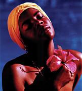 Johnny Sandaire - Haitien Hibiscus Beauty