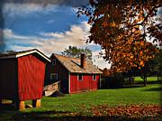 Hale Farm In Autumn Print by Joan  Minchak