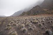 Gravel Road Photos - Haleakala Hiking Trail II by Jenna Szerlag