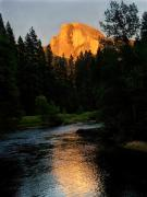 Half Dome Posters - Half Dome - Sentinel Bridge Poster by Mark Wilburn