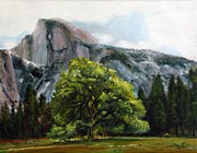 Ly Framed Prints - Half Dome Framed Print by Ma Ly