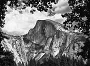 Best Of Show Prints - Half Dome Print by Sue Taylor