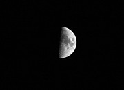 Moon Photography Posters - Half Moon Poster by Richard Newstead