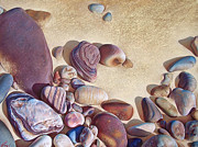 Pebbles Drawings Prints - Hallett Coves stones Print by Elena Kolotusha